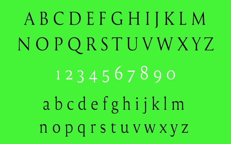 Reforma Font Family Download