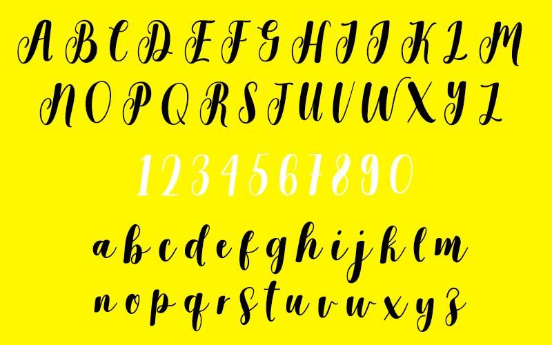 Salmela Script Font Family Download