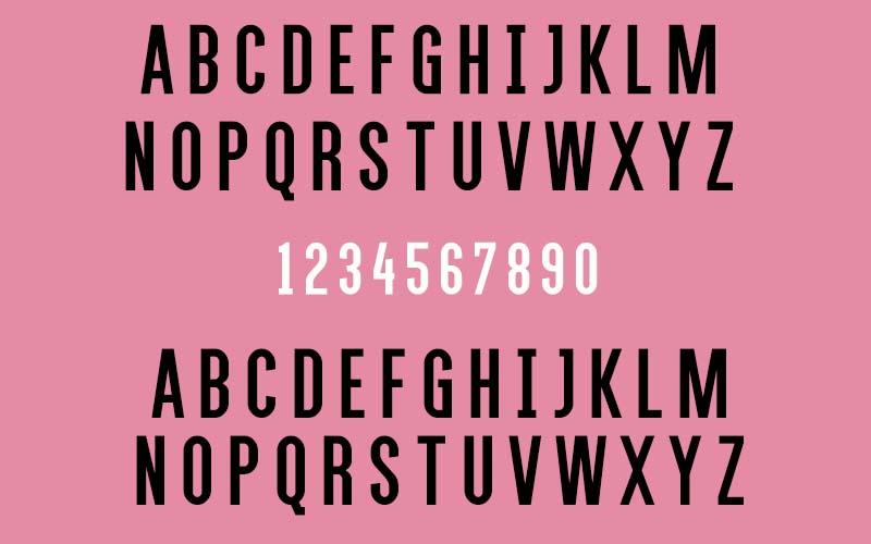 Alegre Sans Font Family Download
